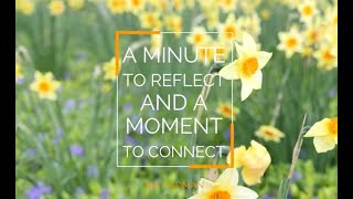 A minute to reflect and a moment to connect | Pip Cadman