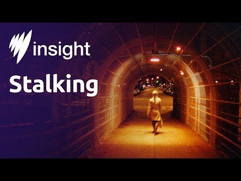 Insight: Stalking
