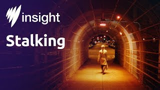 Insight: Stalking