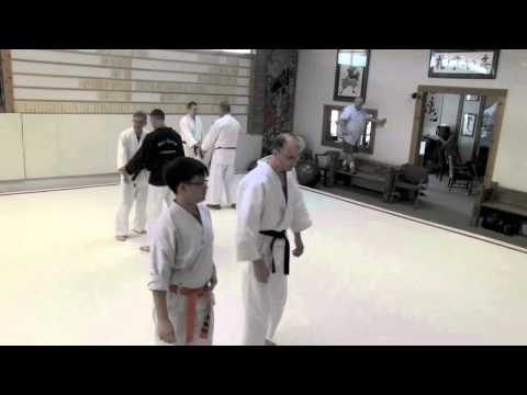 Daito Ryu  Lessons with Eric Pearson  Summer   2015 part 3