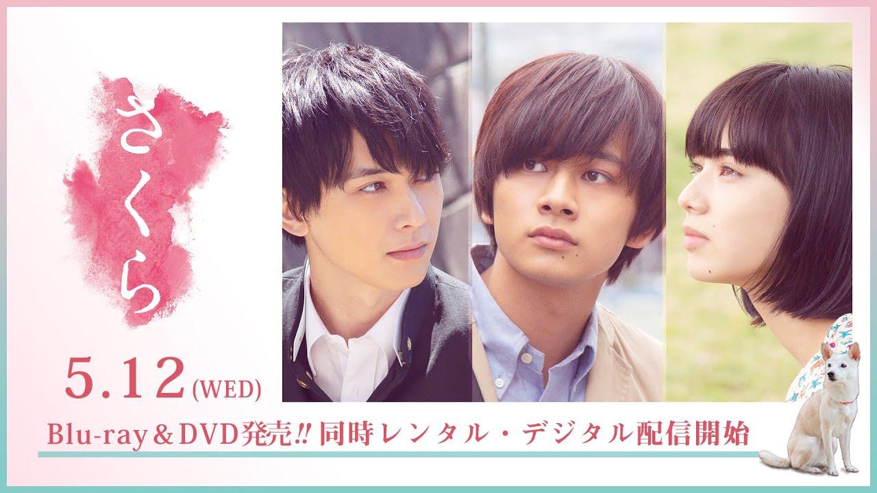 映画『さくら』15秒CM  2021年5月12日(水)Blu-ray&DVD発売