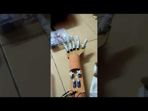 Wired Animatronic Hand using Control Glove