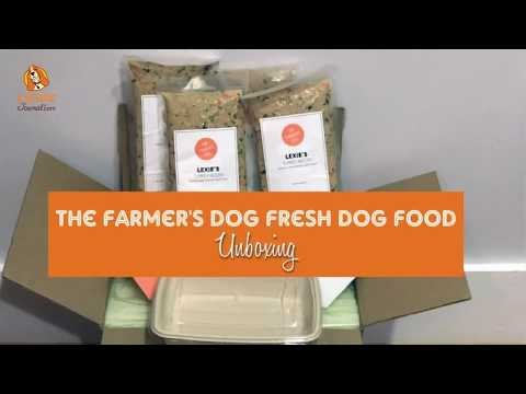 The Farmer's Dog Review: Farm To Bowl Dog Food   CanineJournal com