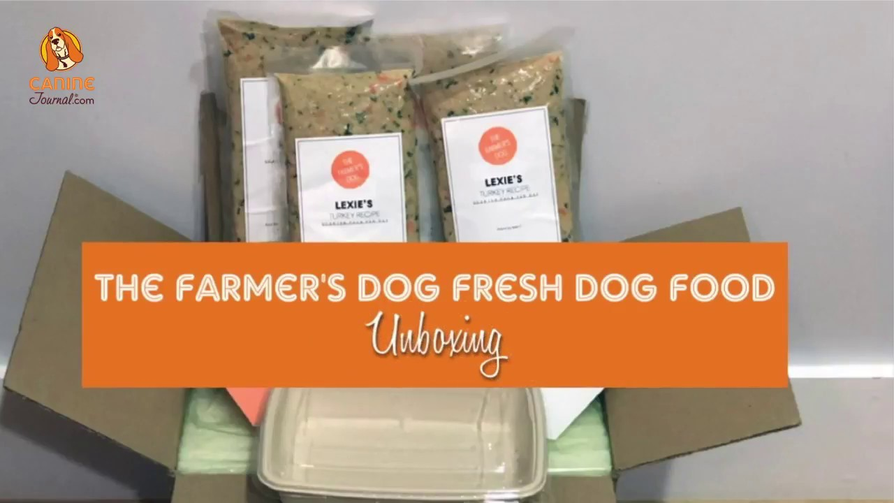 The Farmer S Dog Review Farm To Bowl Dog Food Caninejournal Com