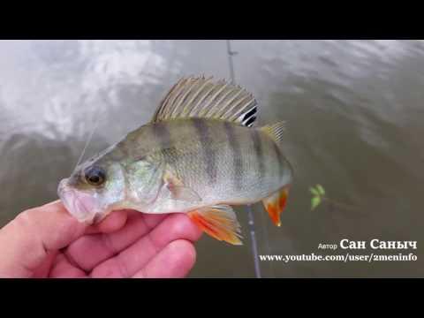 Рыбалка на спиннинг, приманка Твистер от Тоиртап