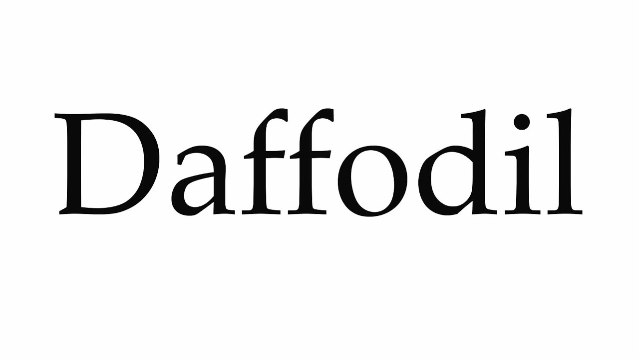 Daffodil English Pronunciation