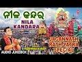 जगन्नाथ यात्रा Special I Jagannath Rath Yatra I NARENDRA KUMAR I Nila Kandra I Full Audio Songs