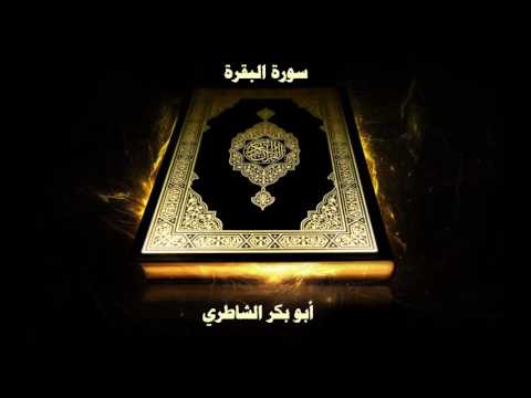 تحميل فيلم ولاد البلد dvd برابط واحد كامل مجانا