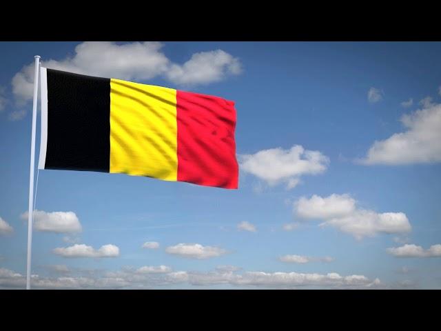 Studio3201 - Animated flag of Belgium