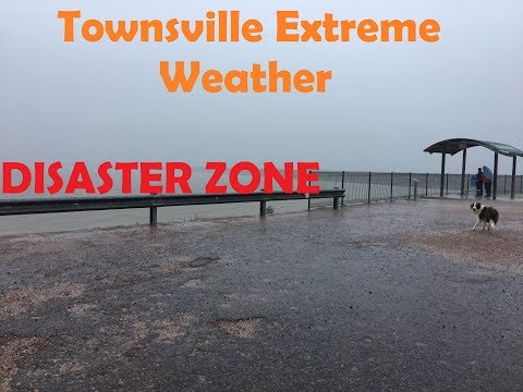 Extreme weather Townsville 2019 Part 1| Flooded Roads | Kangaroo acrobatics