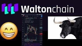 Waltonchain Bullrun Shows Start Of Crypto Revolution in business ecosystem