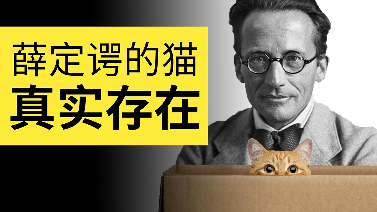 小學生都能看懂的薛定諤的貓!原來既生又死的貓在微觀真實存在 | 雅桑了嗎