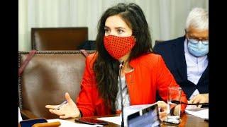 """Diputada Vallejo pide al gobierno """"dejar la soberbia"""" y que patrocine el postnatal de emergencia"""
