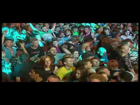 Ska P Live in Woodstock Festival