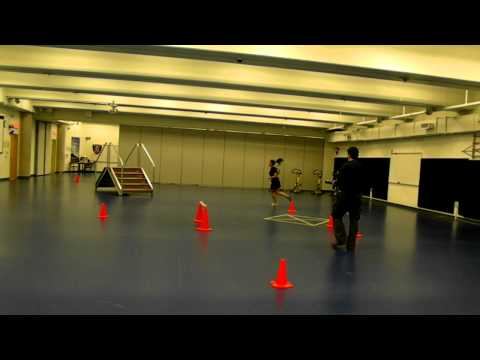 RCMP - GRC PARE / TAPE (Physical Abilities Requirement Evaluation)