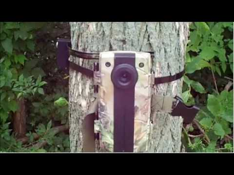 Trail camera security device review