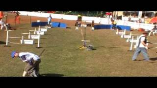 Flyball Race 7 Pine Rivers Show 1 August 2010