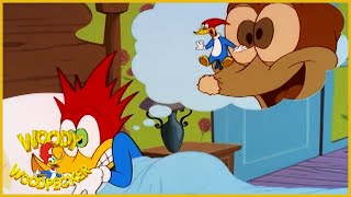 Woody Woodpecker Show | Meany Side of The Street | 1 Hour Compilation | Cartoons For Children