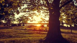 Relaxing Piano Music Most Wonderful and Beautiful