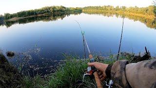 Ловим на Фидер и Донку! Рыбалка летом с Ночёвкой 2020