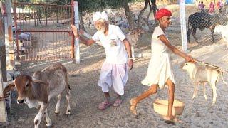 असली मारवाड़ी, Rajasthani video marwadi BHAJAN Rajasthani,संग्राम देवासी भजन rajasthani song marwadi