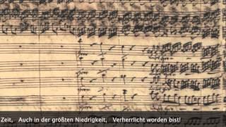 (ヨハネ受難曲第一曲 バッハ自筆譜) BWV245:St.John PassionNr.1 Herr, with Composer's Manuscript