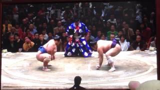 琴奨菊が初優勝に向けて王手!