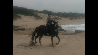 My Near Death Experience  Horse Riding  Galloping #1