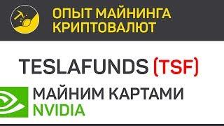 Teslafunds (TSF) майним картами Nvidia (algo Ethash) | Выпуск 109 | Опыт майнинга криптовалют