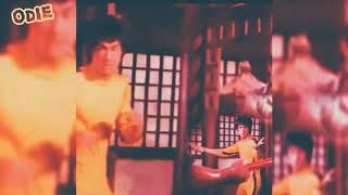 Bruce Lee Odieoreilly s Channel 2019