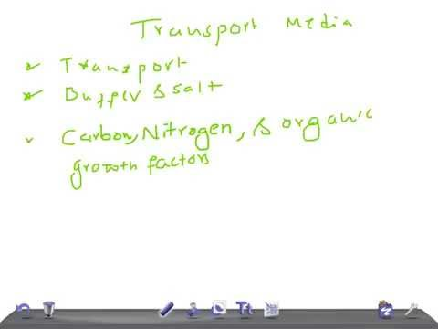 Medical Video Lecture: Transport Media, Microbiology