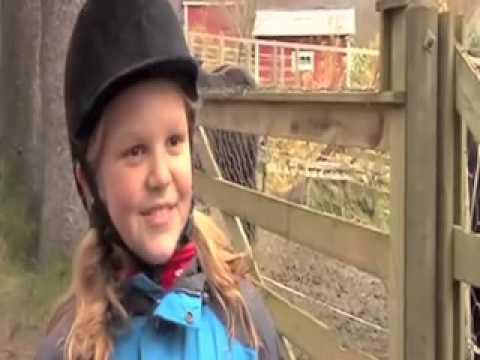 Film frå ridebana 2011