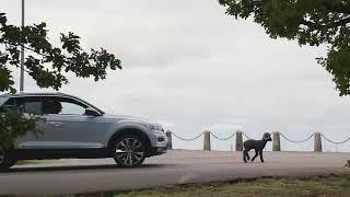 Novi Volkswagen T-Roc.
