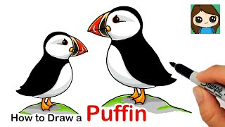 How to Draw a Puffin Bird