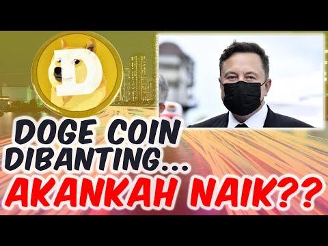 Prediksi Harga Doge Coin - Kemana Arah Doge Coin -