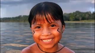 Amazônia o verde do mapa