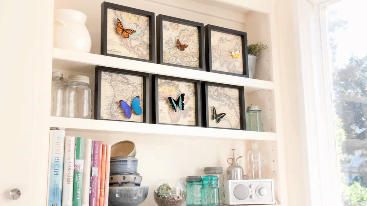 Bug Under Glass Framed Insect Displays - YouTube