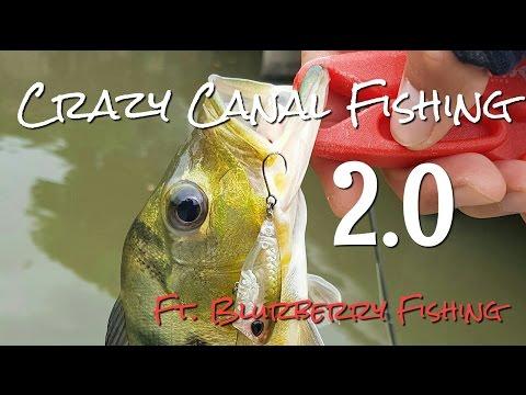 Crazy Canal Fishing 2.0 Ft. Blurberry Fishing