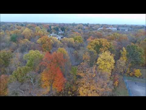Fall colors above Cherokee Park, Louisville KY