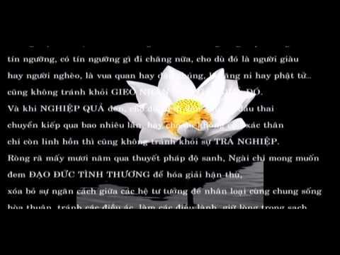 Thiền Sư An Lạc Hạnh - Thông báo MIỄN CHỮA BỆNH