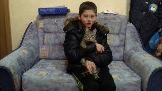 Мальчик, который не смог дойти до дома и переночевал в сарае, рассказал как его согревал кот