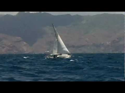 Swell sailing upwind in the trades