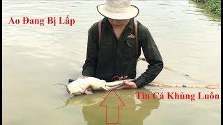 Kích Cá Trong Hồ Đang Lấp Và Cái Kết