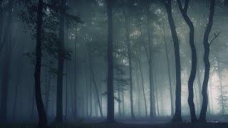 7 таинственных мест Битцевского леса (док. фильм)