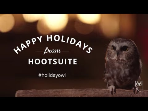 The Hootsuite Holiday Owl