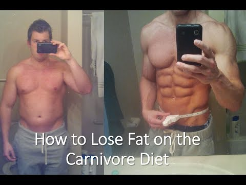 Fat Loss and The Carnivore Diet | Kevin Stock