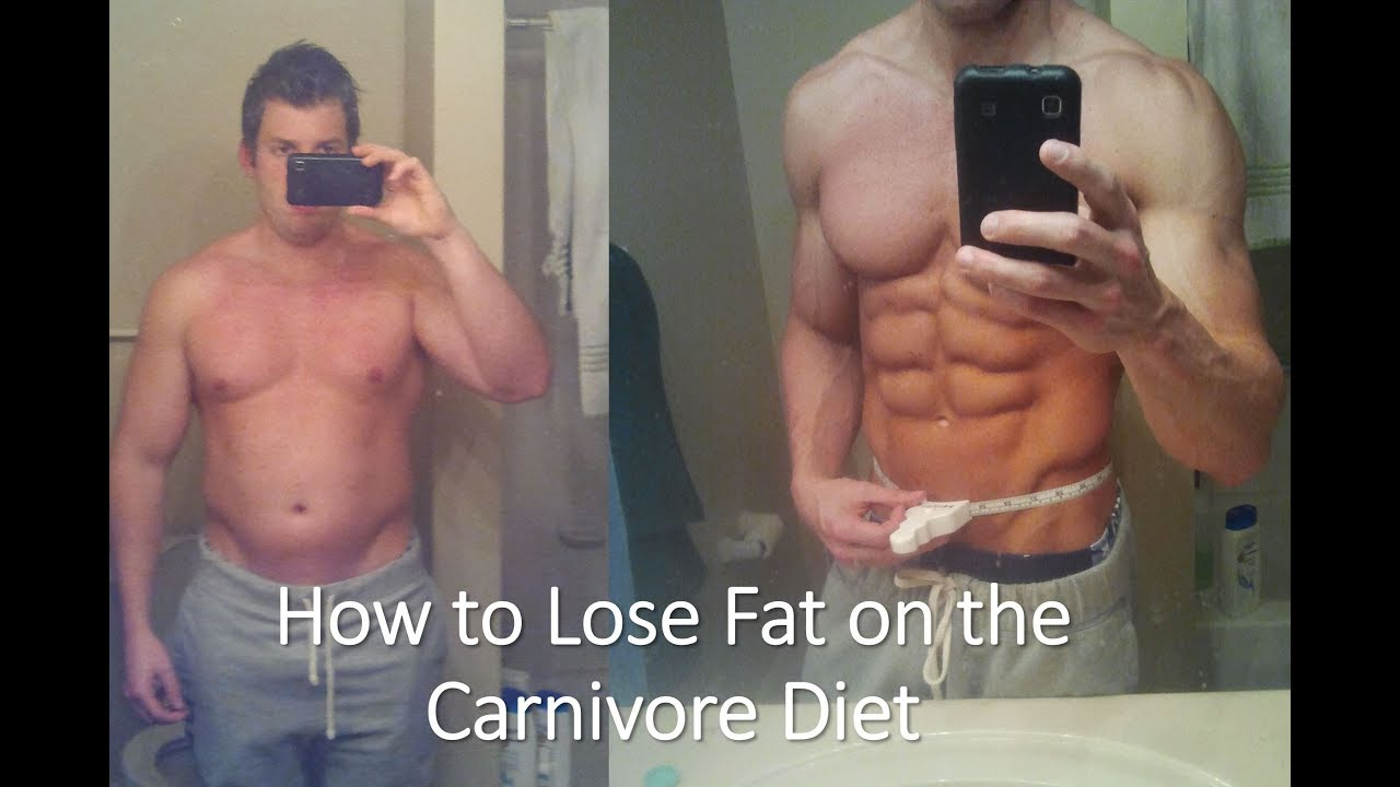 Fat Loss And The Carnivore Diet Kevin Stock