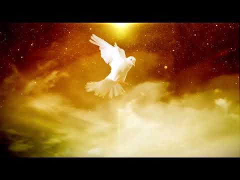 PRAYERS BEFORE YOU SLEEP - REV ROBERT CLANCY
