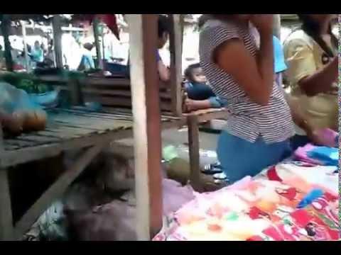 Zamboanga Province Ipil Town philippines Market life Street life