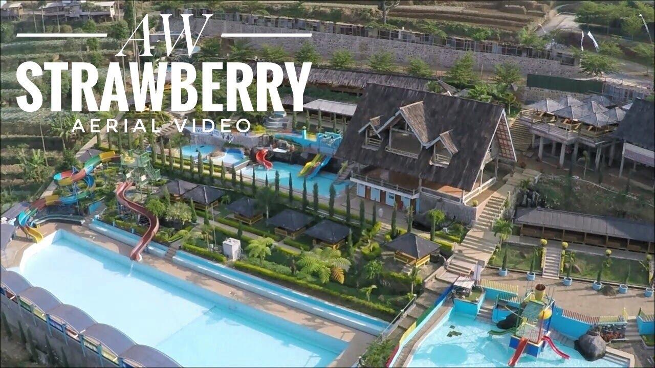 Tempat Wisata Bandung Aw Strawberry Aerial Video